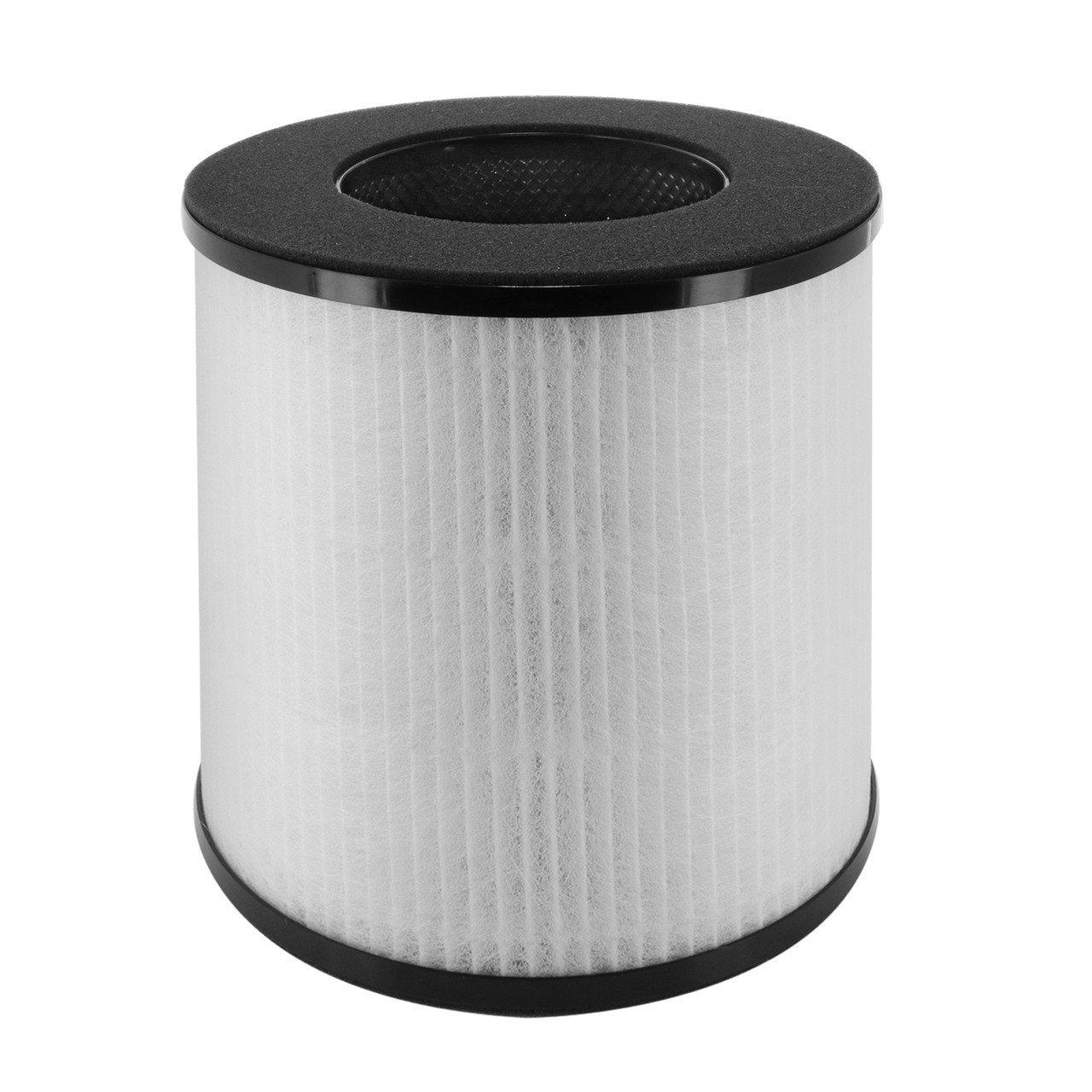Replacement Filter for Renair