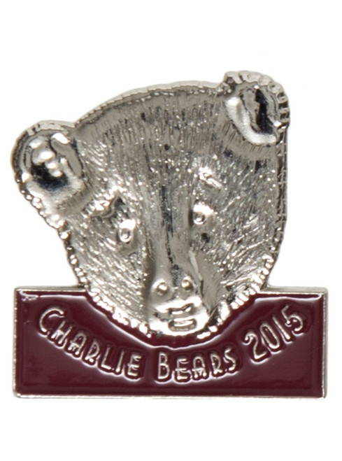 Pin Badge 2015
