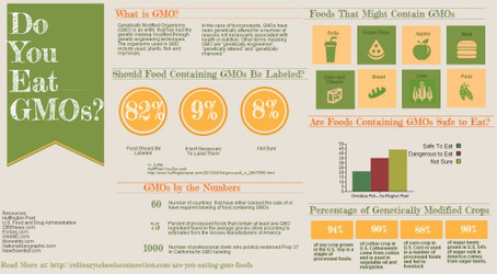 What's Right For You: 100% Non GMO or Just Less? - Sarvaa