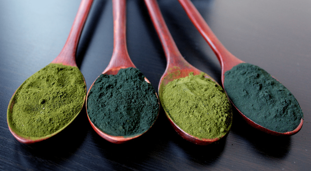 chlorella-and-algae-powders.png