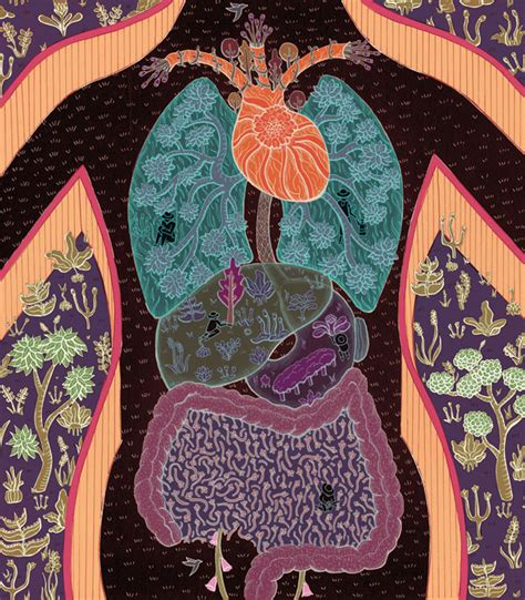 holistic-microbiome-health.jpg