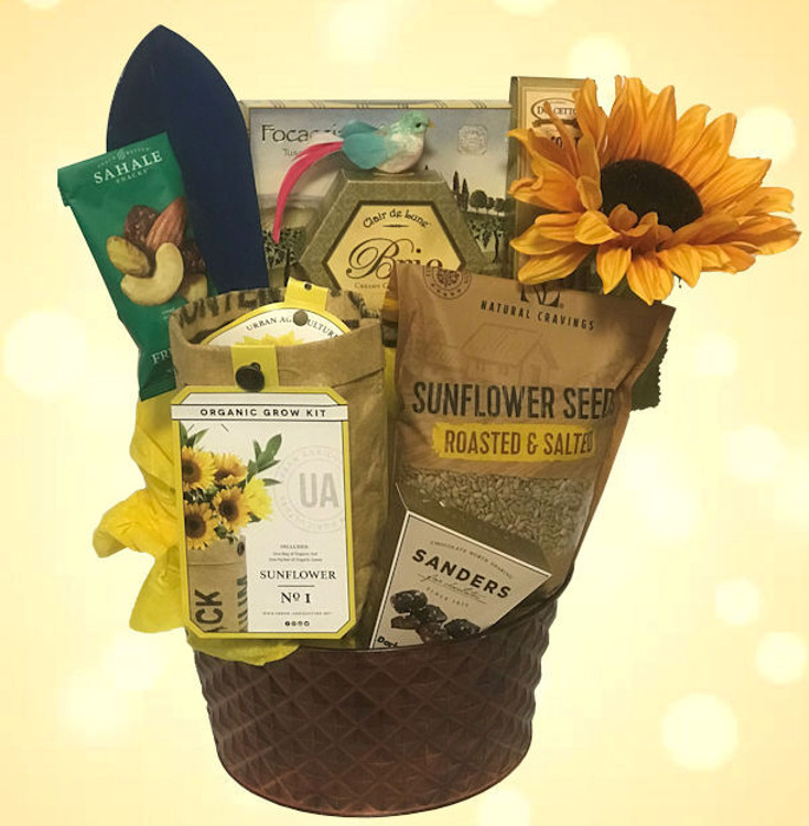 This gift will brighten their day! Includes a Sunflower growing kit, sunflower seeds, a gardening tool, chocolates, cheese, crackers, nuts, cookies, and a sun flower enhancement presented in a hammered copper metal container.