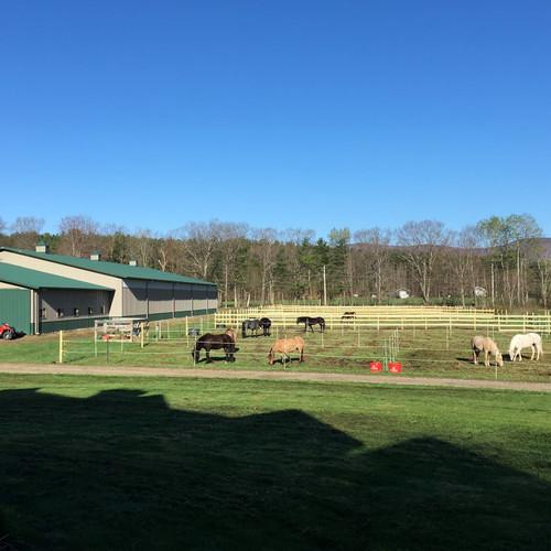 Farm Fee Per Day