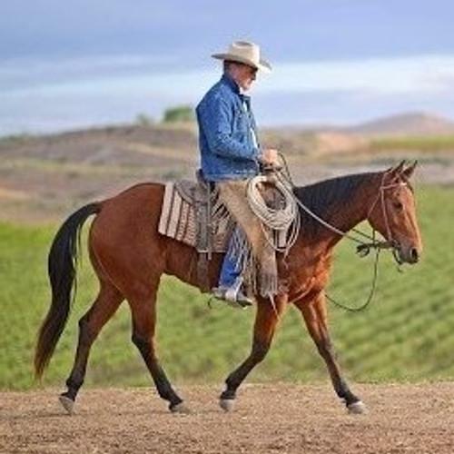 JOE WOLTER Horsemanship & Trail Clinic - July 9-11th * RIDER SPOTS FULL