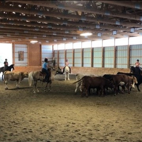 Two Day Cattle/Trail Clinic - June 26 & 27th