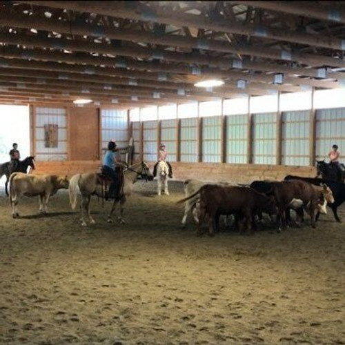 Two Day Cattle/Trail Clinic - Oct. 2nd & 3rd