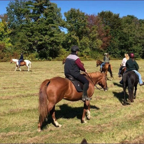 Riding in Groups  with Natural Obstacles - September 25th * FULL