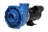 Gecko Alliance FloMaster XP2 2 Speed Side Discharge Spa Pump