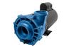 Gecko Alliance Aqua-Flo XP2E 4 HP 2 Speed Spa pump Model 05334012-2040