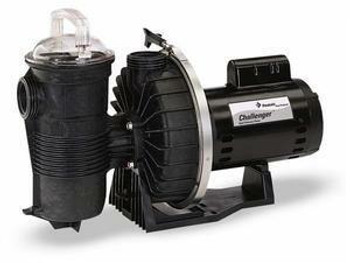 Pentair Pentair Challenger High Pressure 1 HP Pool Pump CHII-NI-1A