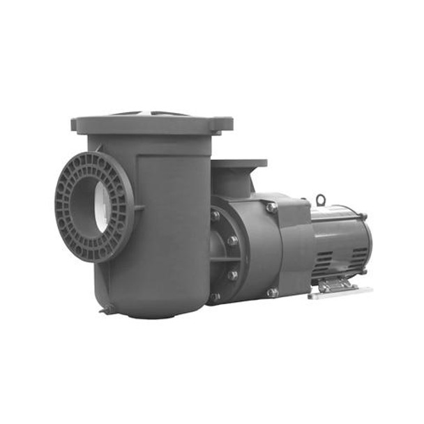 Pentair PENTAIR EQ SERIES COMMERCIAL 5 HP 1 PHASE POOL PUMP WITH STRAINER