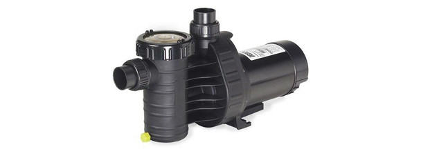 Speck Speck Above-Ground Pool Pump Model A91