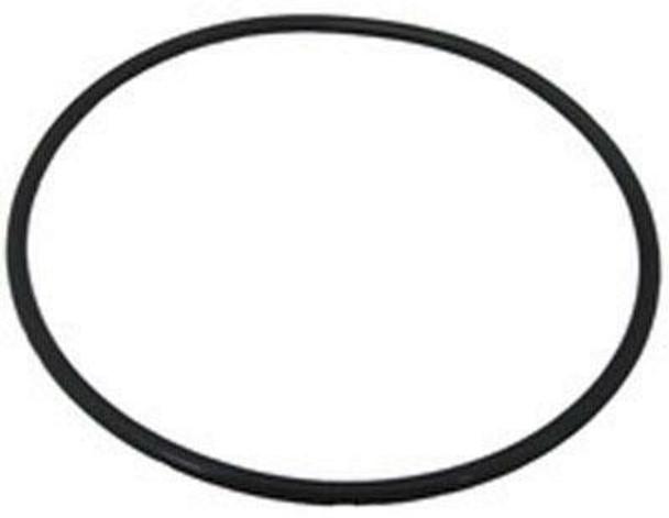King Technology Sani-King Inground Chlorine Feeder Replacement Cap O-Ring