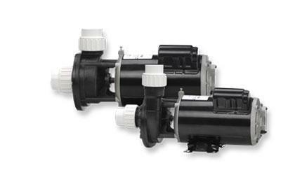 Gecko Alliance 02110000-1010 Pump Fream 1 HP 115V44; 2 Speed 48y Flomaster