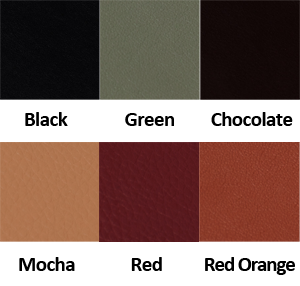 Upholstery Colors for Pedicure Chair