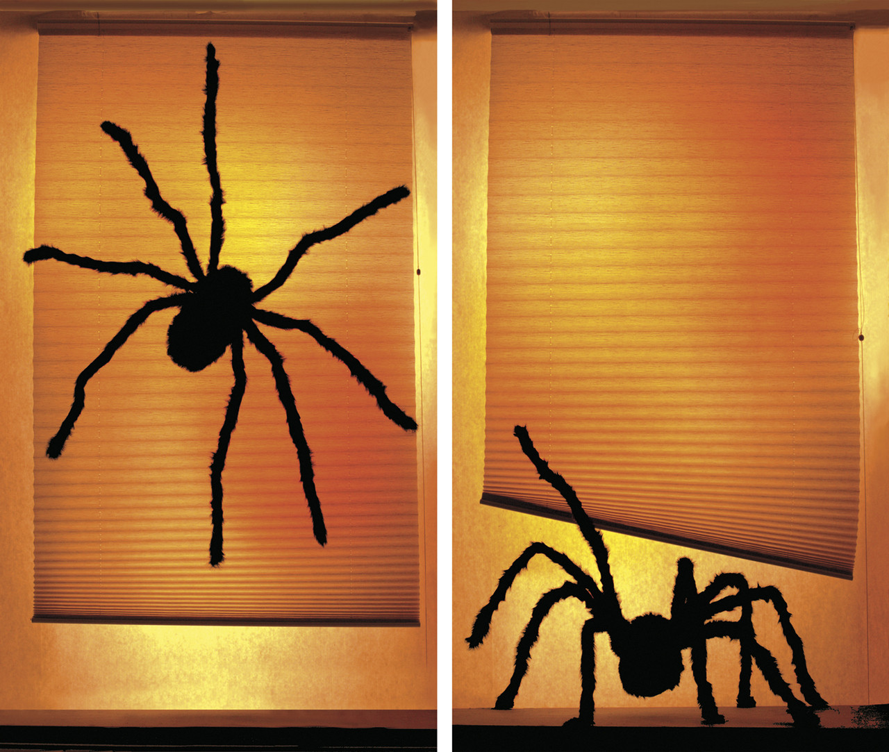 "Shady Spiders 34 5""x60"" Backlit Posters"