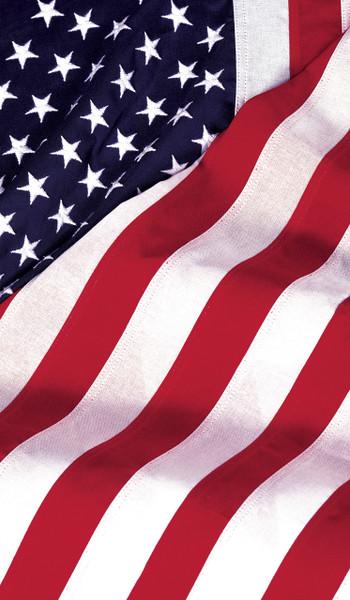 Old Glory USA American Flag Decorative Window Poster