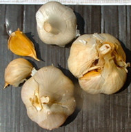 """""""Without garlic I simply would not care to live."""" – Louis Diat"""