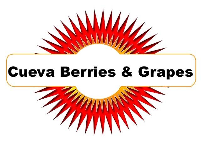 cueva-berries.jpg