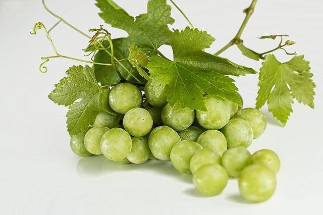 grapes-582207-640.jpg