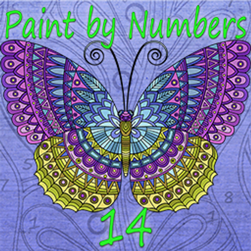 Paint By Numbers 14