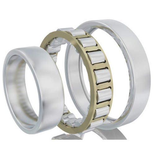 FAG Bearing (Schaeffler) N224-E-M1-C3 Cylindrical Roller Bearing