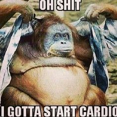 Getting back into Cardio with Bridget