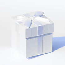 6 x White Pearlised Box With White Ribbon And Tissue Paper