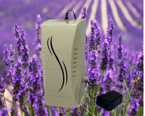 Our calming scent diffuser package includes your choice of 4 scents.