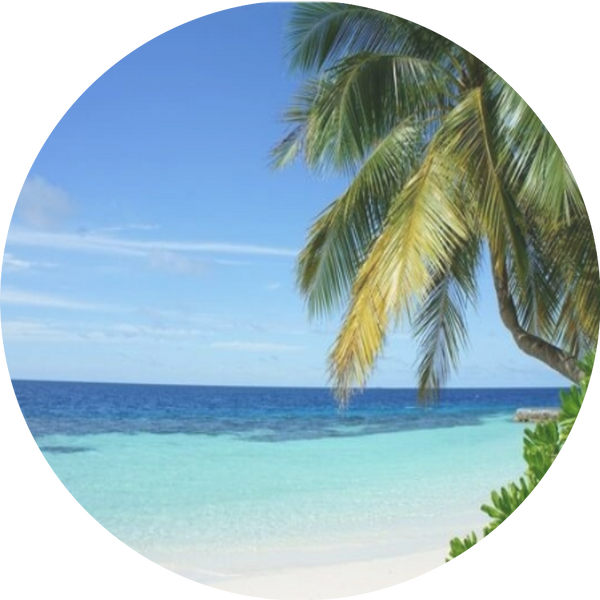 Island Breeze is a breezy tropical pineapple and light floral essence. Very smooth and uplifting. Excellent for any type of environment.