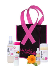 Support during Breast Cancer Treatment