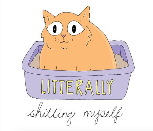 Literally Cat