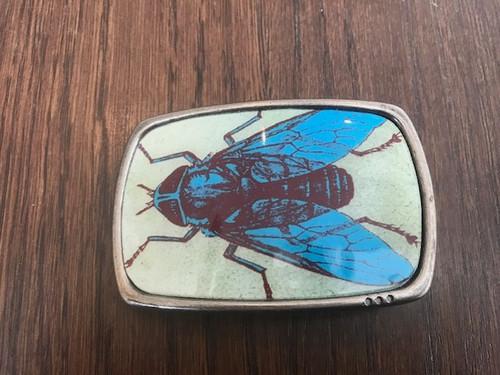 Bug Buckle