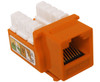 Orange RJ45 COMPUTER JACK,Cat6  110 Punch-down CableSupply.com