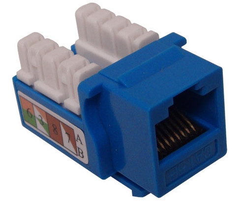 Blue RJ45 COMPUTER JACK,Cat6  110 Punch-down CableSupply.com