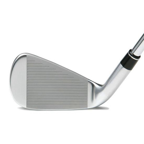 TS-1 Forged Iron Heads