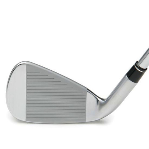 TS-2 Forged Iron Heads