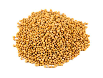 HIND MUSTARD SEED YELLOW 100G