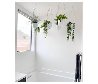Bolo Hanging Planter