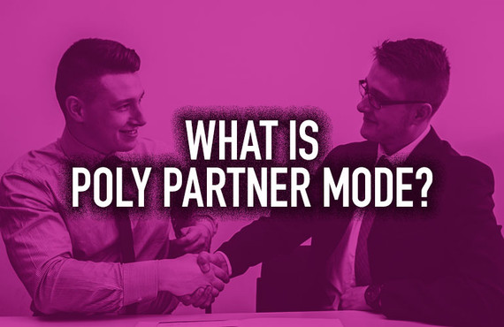 What Is Poly Partner Mode?