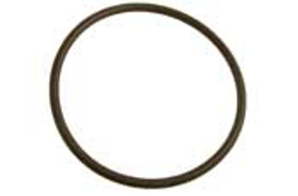 PENTAIR | O-ring | 39101900