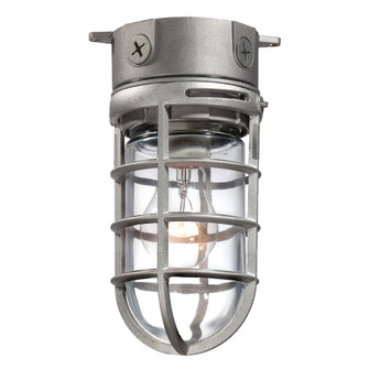 OUTDR,CEILING MNT,A19,100W,SN (23265-011)