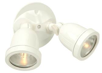 2 Light Halogen Flood (20|Z412-W)