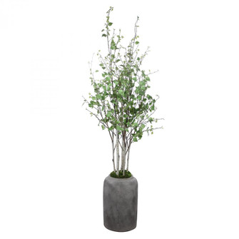 Uttermost Aldis Potted River Birch (85|60146)