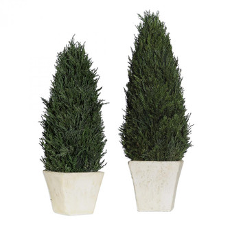 Uttermost Cypress Cone Topiaries, S/2 (85|60140)