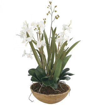Uttermost Moth Orchid Planter (85|60039)