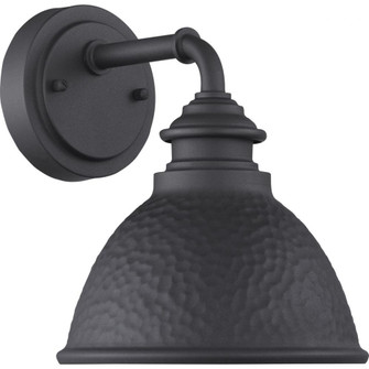 Englewood Collection One-Light Small Wall Lantern (149 P560097-031)