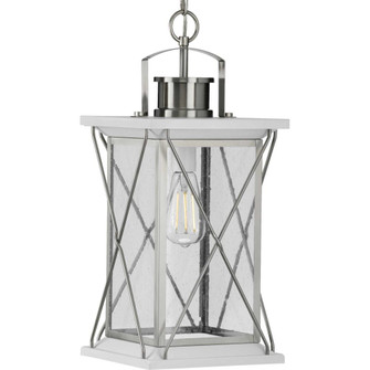 Barlowe Collection Stainless Steel One-Light Hanging Lantern (149|P550068-135)