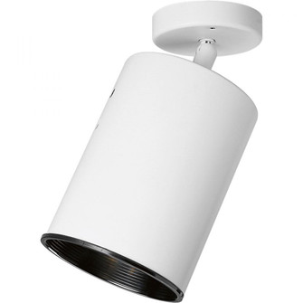 One-Light Multi Directional Wall/Ceiling Heat Lamp (149|P6397-30)