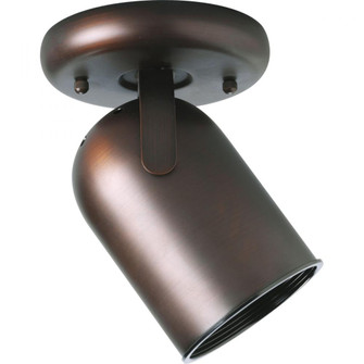 One-Light Multi Directional Roundback Wall/Ceiling Fixture (P6147-174)